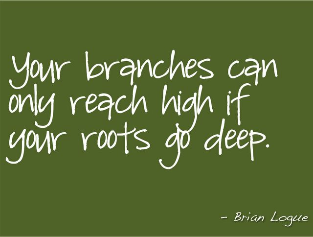 Your branches can only reach high if your roots go deep.