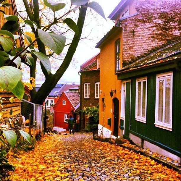 Damstredet, Oslo, Norway in autumn coat
