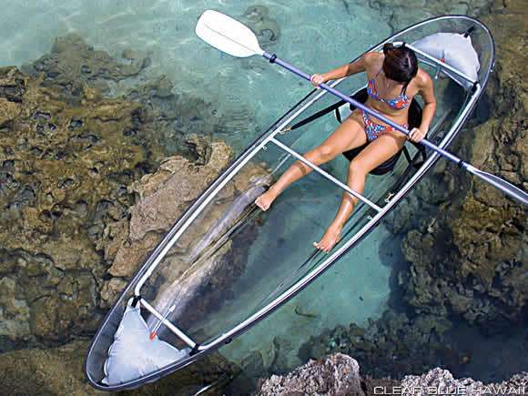 The Molokini all transparent kayak is a paddler's dream as you can really see what's beneath the boat as you explore the beauty of the underwater world. On a calm, clear day, you could see as far as 75 feet.