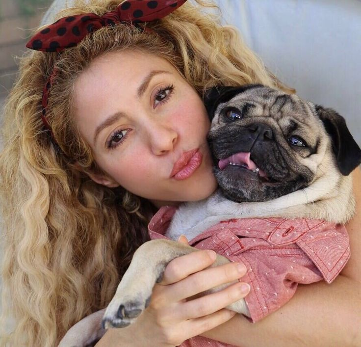 their friends -- Shakira & young Pug - https://twitter.com/shakira