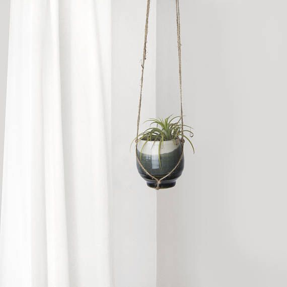Air Plant or Tiny Succulent Hanging Planter