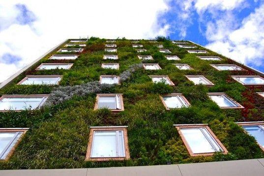 Paisajismo Urbano, Hotel Gaia, B3, Bogota, Colombia, living wall, vertical garden, vertical ecosystems, green wall, urban design, pollution, green design, sustainable design, eco-design, botanical design