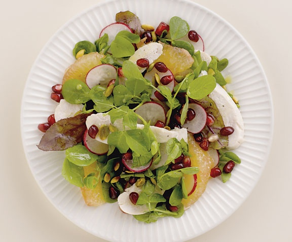 chicken and grapefruit salad with pommegranate dressing