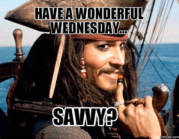 Funny Animal Wednesday Meme : Best wednesday memes images on pinterest