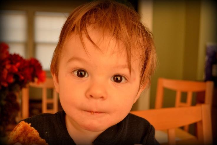 Developing multiple intelligences in babies.