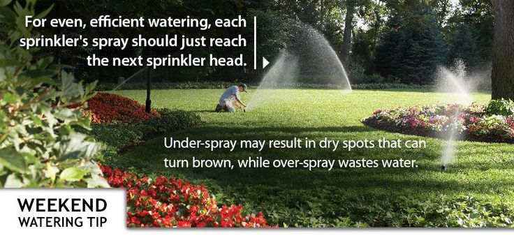 Landscape Watering Tip: For even, efficient watering, each sprinkler's spray should just reach the next sprinkler head. Under-spray may result in dry spots that can turn brown, while over-spray wastes water. #sprinkler #landscape #valve #timer #lawn #plant #grass #garden #yard #backyard #water #diy #rainbird (via http://store.rainbird.com)