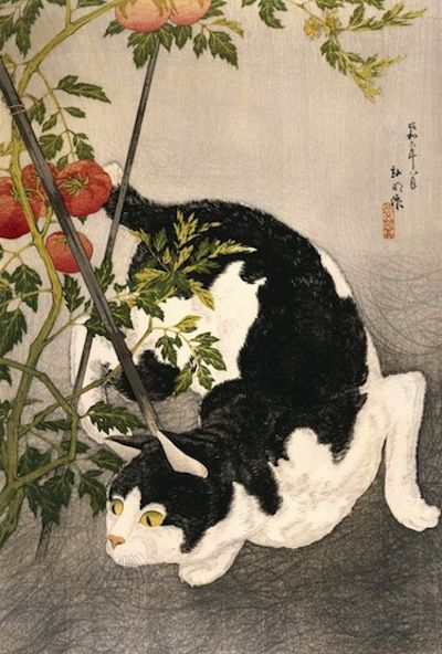 Takahashi Hiroaki (Shotei), Published by Fusui Gabo, Cat Prowling Around a Staked Tomato Plant, 1931, woodblock print, 20 7/8 x 13 7/8 in. T...
