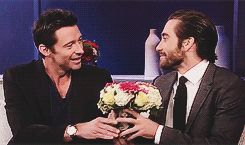 New trending GIF on Giphy. jake gyllenhaal flower hugh jackman bromance. Follow Me CooliPhone6Case on Twitter Facebook Google Instagram LinkedIn Blogger Tumblr Youtube