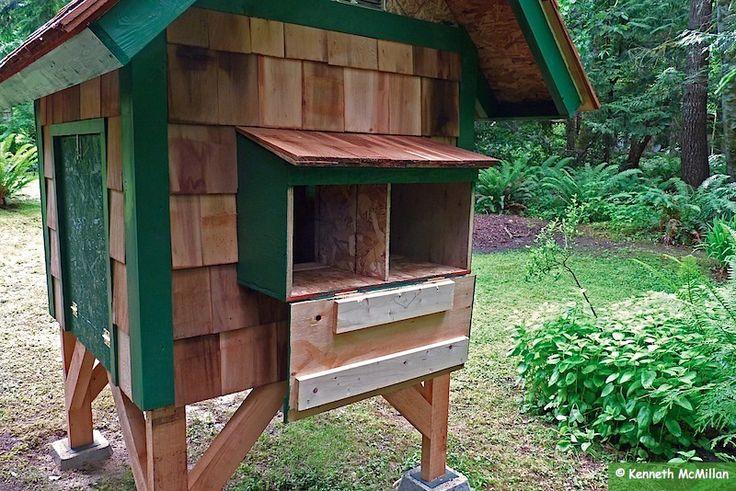 Nesting box access door