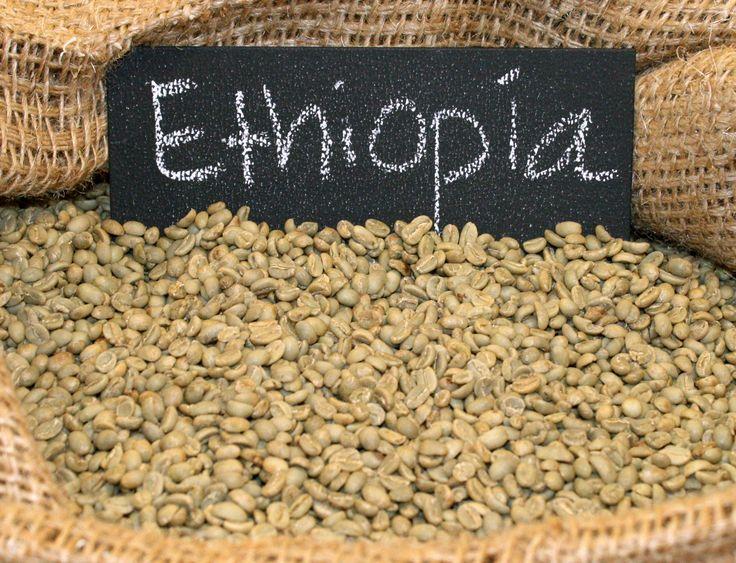 Ethiopia Yirgacheffe || Green Coffee Beans