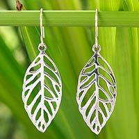 Sterling silver dangle earrings, 'New Leaf'