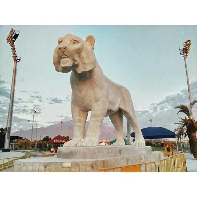 Escultores Mexicanos, Monumento EL Tigre UANL, Juan Canfield, escultor, 81 aniversario de la Universidad Autonoma de Nuevo Leon, e inauguracion de la Universiada Nacional, Monterrey Mexico 20 de abril 2015 http://www.casacanfield.com  UANL #Universiada2015 #tigre