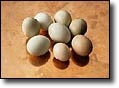 Dr. Lam: Eggs - Good for Your Body  They contain choline and betaine