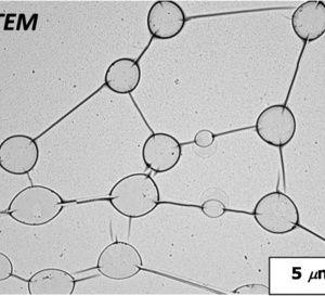 Un nanosistema químico imita a las redes neuronales para transportar energía eléctrica