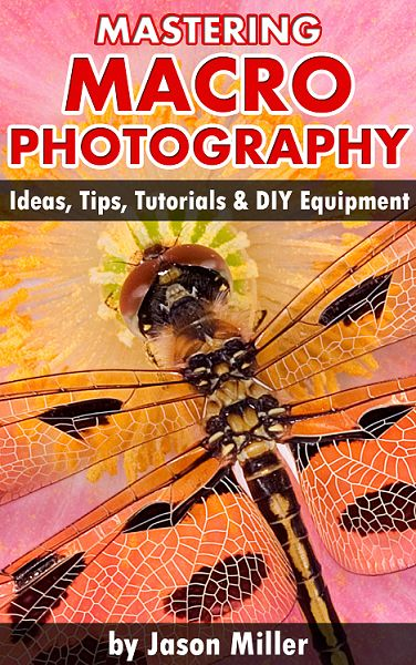 Top 20 Photography Books to Improve Your Skills ...