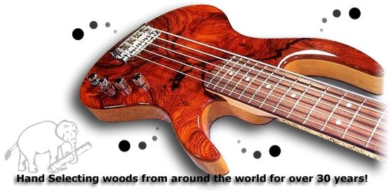 Image result for exotic guitar body