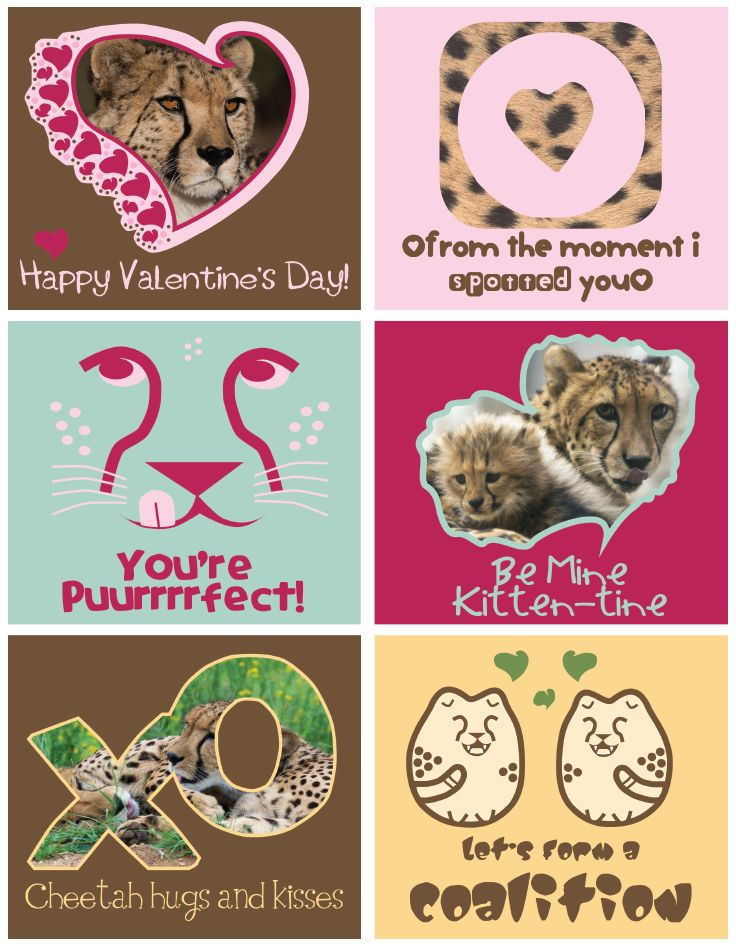 Download And Print Cheetah Valentines Day Cards Click