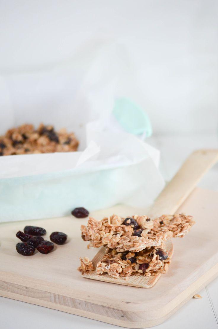Rezept Cranberry Hazelnut Granola Bars | Cranberry Haselnuss Müsliriegel - vegan, gesund, sojafrei, zuckerfrei