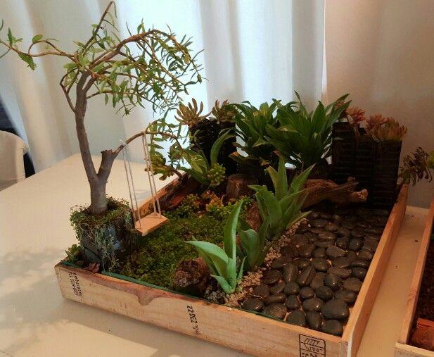 Miniature garden created for garden talk in Jeffreys Bay by Barbara Eke