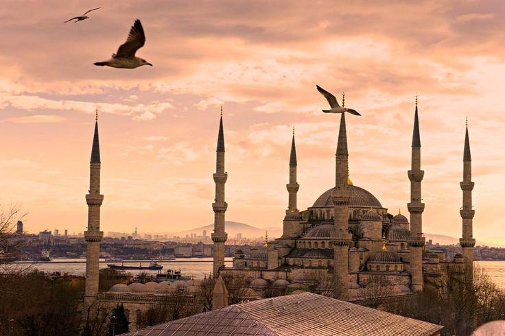 Découverte des trésors turcs! Sise entre deux continents, la Turquie possède une culture très diversifiée en raison de sa localisation géographique. Étant l'une des plus anciennes nations au monde, les différents facteurs historiques ont joué un rôle important dans la définition de son identité actuelle.  #voyages #éducatifs #Turquie #Asie #Europe #histoire #culture #Istanbul