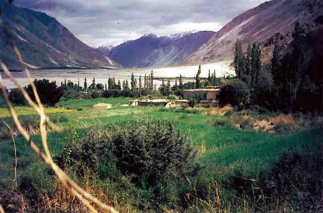 Panamik Village