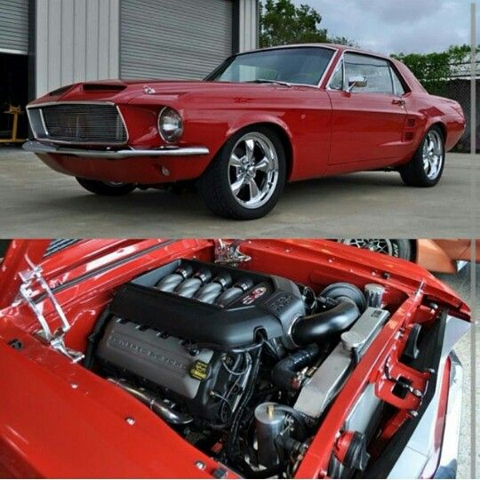 Best Mustang Images On Pinterest Ford Mustangs Mustang Cars