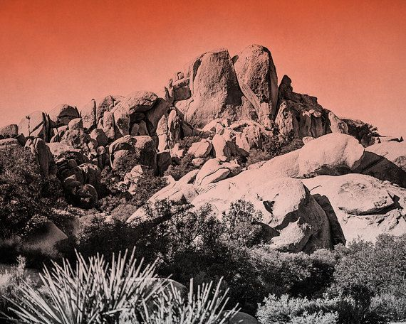 This southwestern photograph features the stunning trees and rocks at Joshua Tree National Park. The black and white landscape is enhanced by a bright orange fog. To view PRICING select SIZE using drop-down menu. I can print my images in almost any size. If you dont see the size you want please let me know.  SMALL PRINTS (4x4,4x6,5x5,5x7) are available here - www.etsy.com/listing/262524716  UPGRADE your print; - WATERCOLOR PRINT https://www.etsy.com/listing/23357...