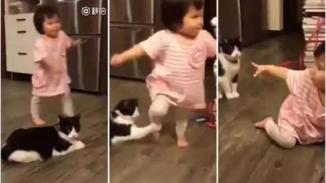 Video kucing nakal sadung kaki budak kecil sampai terjatuh   Satu rakaman video melucukan yang merakam detik nakal seekor kucing menyadung kaki seorang kanak-kanak menjadi viral di China apabila video tersebut dimuat naik di Facebook Shanghaiist.  Video kucing nakal sadung kaki budak kecil sampai terjatuh  Sejak ia dimuat naik video itu mendapat lebih 800000 tontonan dan berbelas ribu perkongsian.  Video yang dipercayai dirakam di China itu menunjukkan kanak-kanak terbabit berjalan…