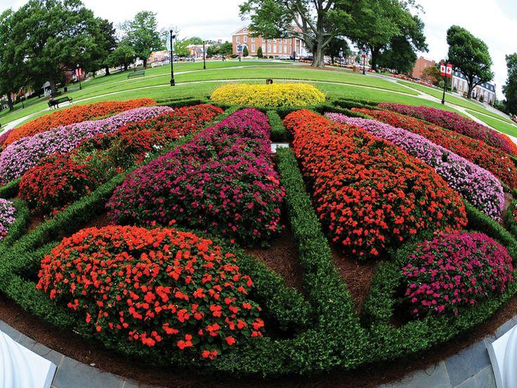 59 best Knot Gardens images on Pinterest Formal gardens Beautiful