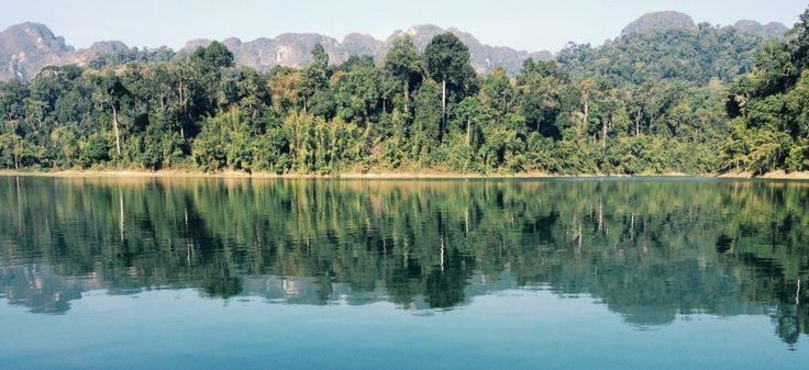 Thailands Regenwald: Khao Sok Nationalpark (2h nördlich von Phuket)