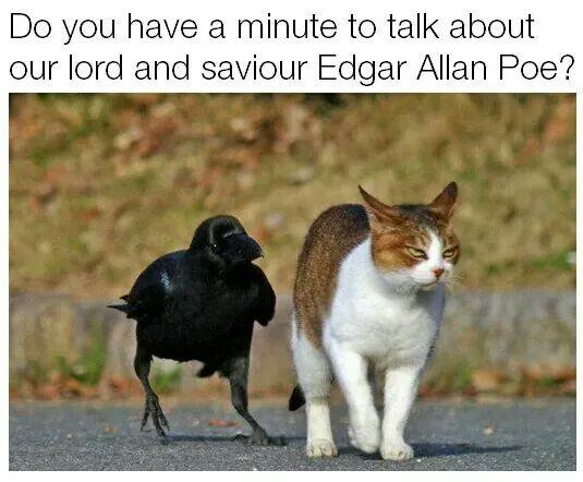 I said good day to you Sir!