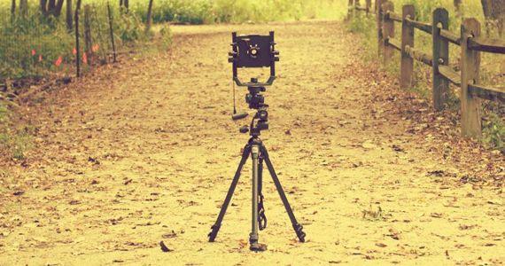 Photographie : maitriser la technique de la profondeur de champ pour des photos plus dynamiques