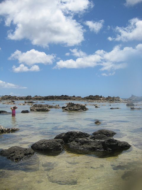 Shark's Cove, North Shore, Oahu