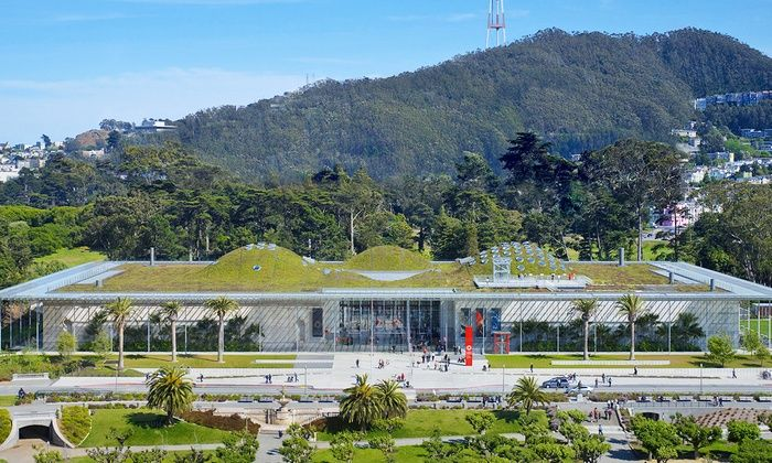 GROUPON - California Academy of Sciences - Golden Gate Park: Adult, Child, or Youth or Senior General Admission at California Academy of Sciences
