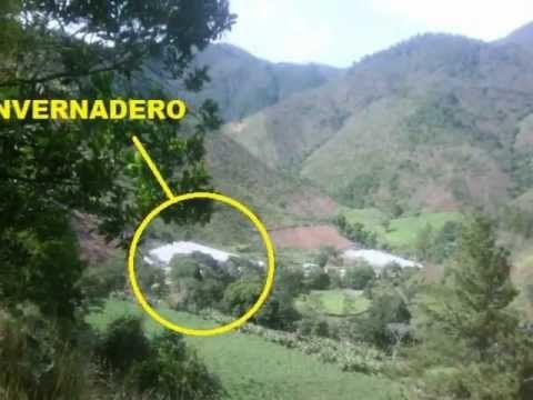 Invernadero en venta en La Cienaga - www.urbedata.com  Más detalles en:  http://www.youtube.com/watch?v=f2TcRcZTtrA=relmfu
