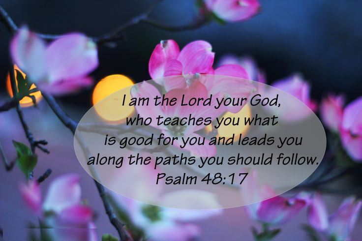 "Psalm 48:17 This is what the Lord says—your Redeemer, the Holy One of Israel: ""I am the Lord your God, who teaches you what is good for you and leads you along the paths you should follow."" - We know right from wrong, but then it is our responsibility to do the right thing. Satan makes it so easy to veer off the path of righteousness, but what is easy is seldom good for us."