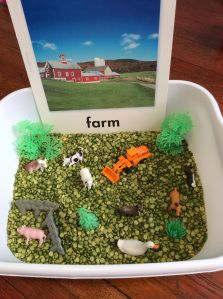 Farm sensory bin. Farms give us healthy foods.
