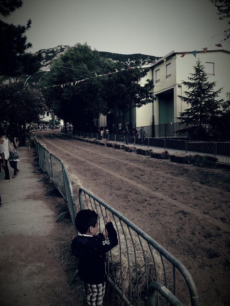 Dorgali (Nu). Il giorno di ferragosto, nel centro del paese, si svolge la tradizionale corsa dei cavalli. Per l'occasione, la strada principale viene ricoperta di sabbia e balle di fieno.