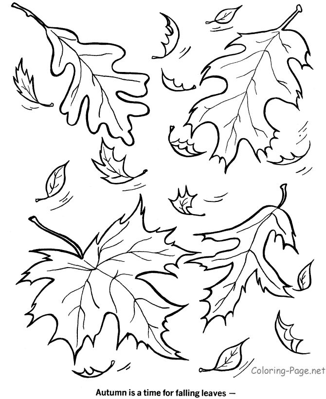 Fall Coloring Book Pages - Falling leaves