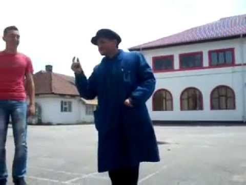 Cantecul Elefantului Funny