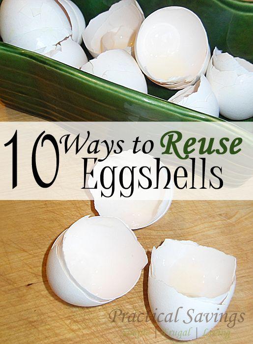10 Ways to Reuse Eggshells