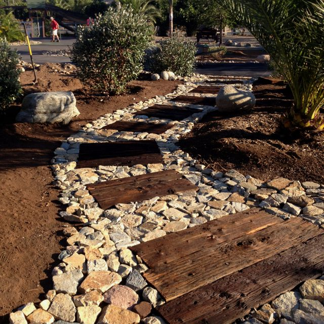 412 Best Images About Xeriscape (front Yard) Zone 8a On