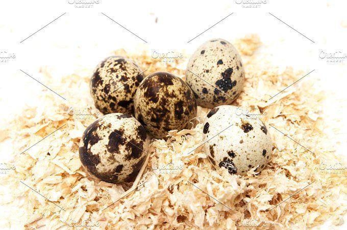 quail eggs by Arnaufoto on @creativemarket