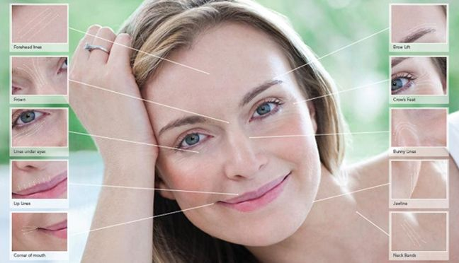 fine lines appear on the soft and delicate skin under eyes eye diagram no labels eye diagram no labels eye diagram no labels eye diagram no labels