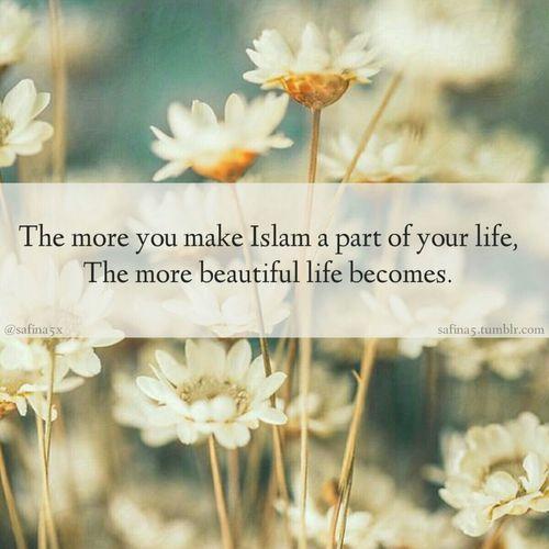 Islamlover....
