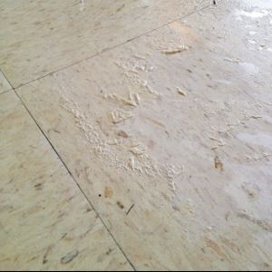 Top 25 Best Linoleum Floor Cleaning Ideas On Pinterest