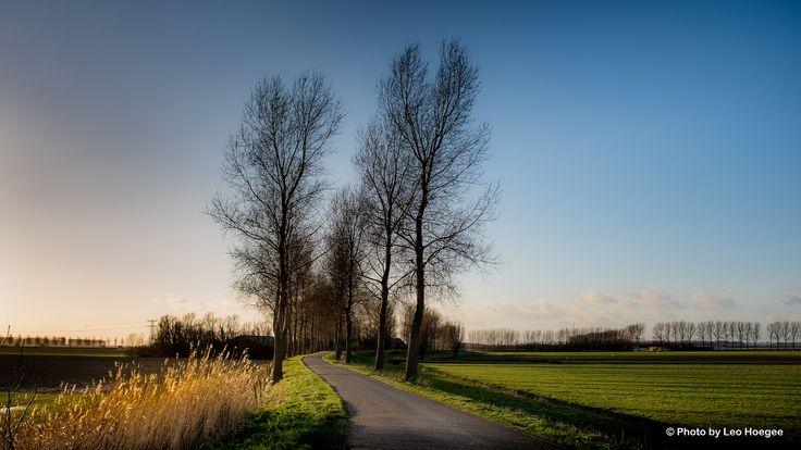 Zeedijk to Middelharnis. | by leo hoegee photography