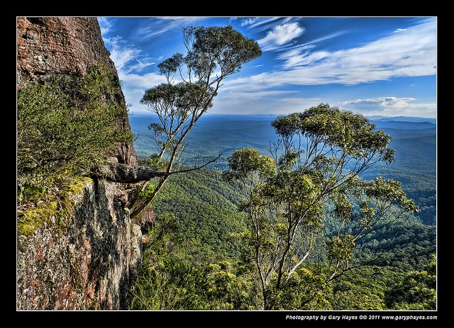 008_Views from Pigeon House Mountain, Didhol, Budawangs by Gary Hayes, via Flickr