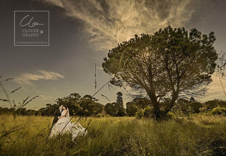 Sydney Wedding Pre-Wedding Photography ._ copyright:www.clovergraphy.com.au Copyright: www.clovergraphy.com