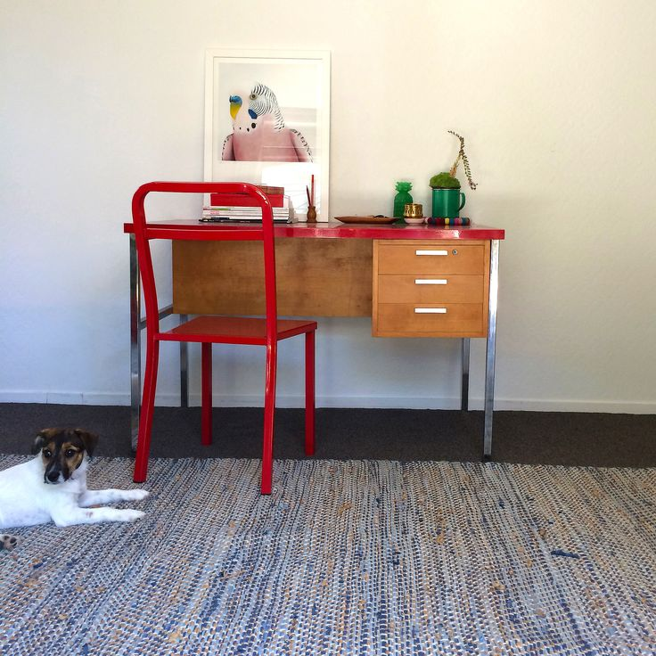 #margaretpetchell #artprint @endemicworld #vintagedesk #Jackrussell #styling by #places&graces